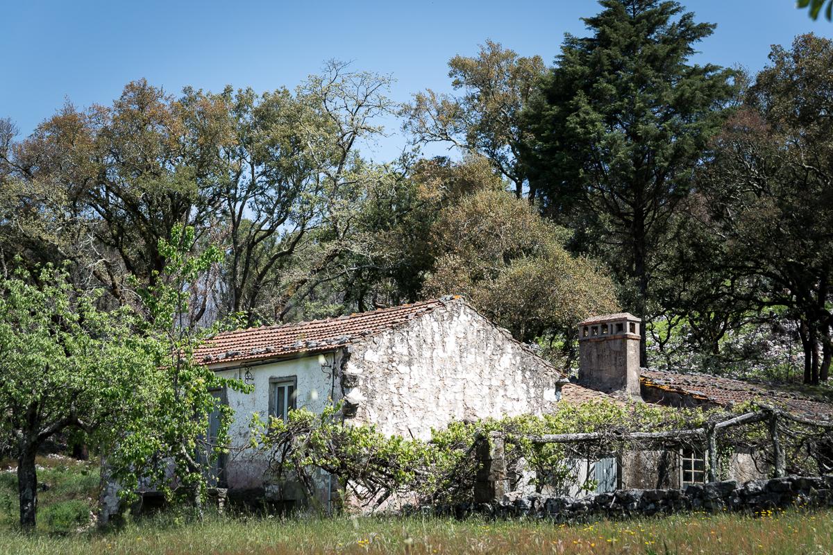 Ferraria-de-São-João_Korkeichenwald_Häuser_III