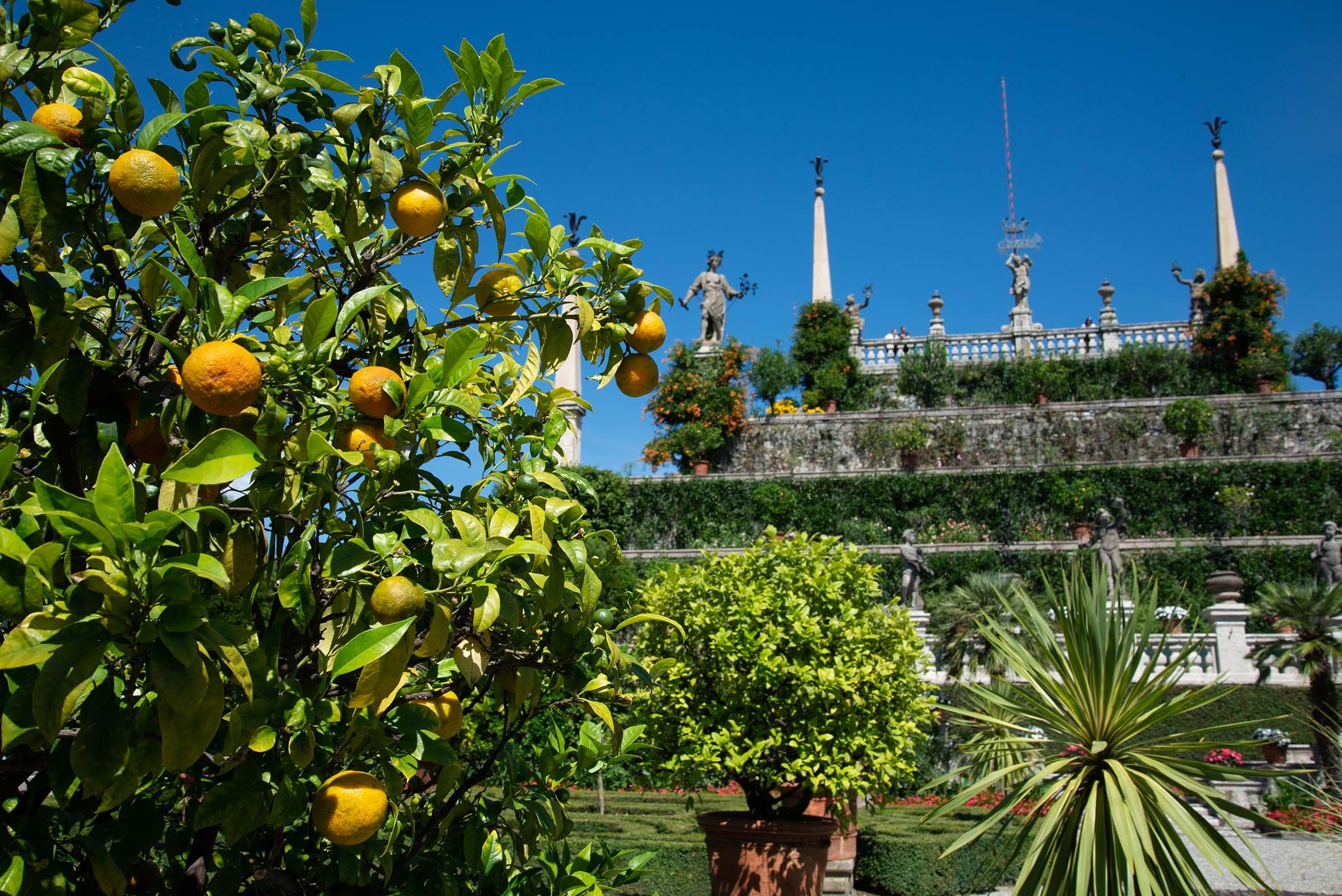 Gärten-Borromeo-Lago-Maggiore-002