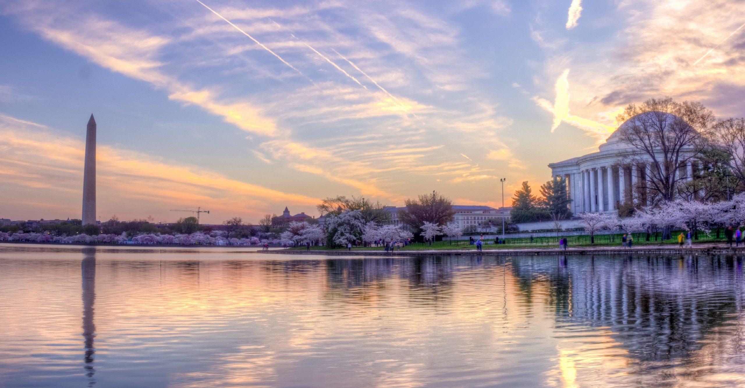 Pano of Jefferson at Sunrise, Cherry Blossom season.