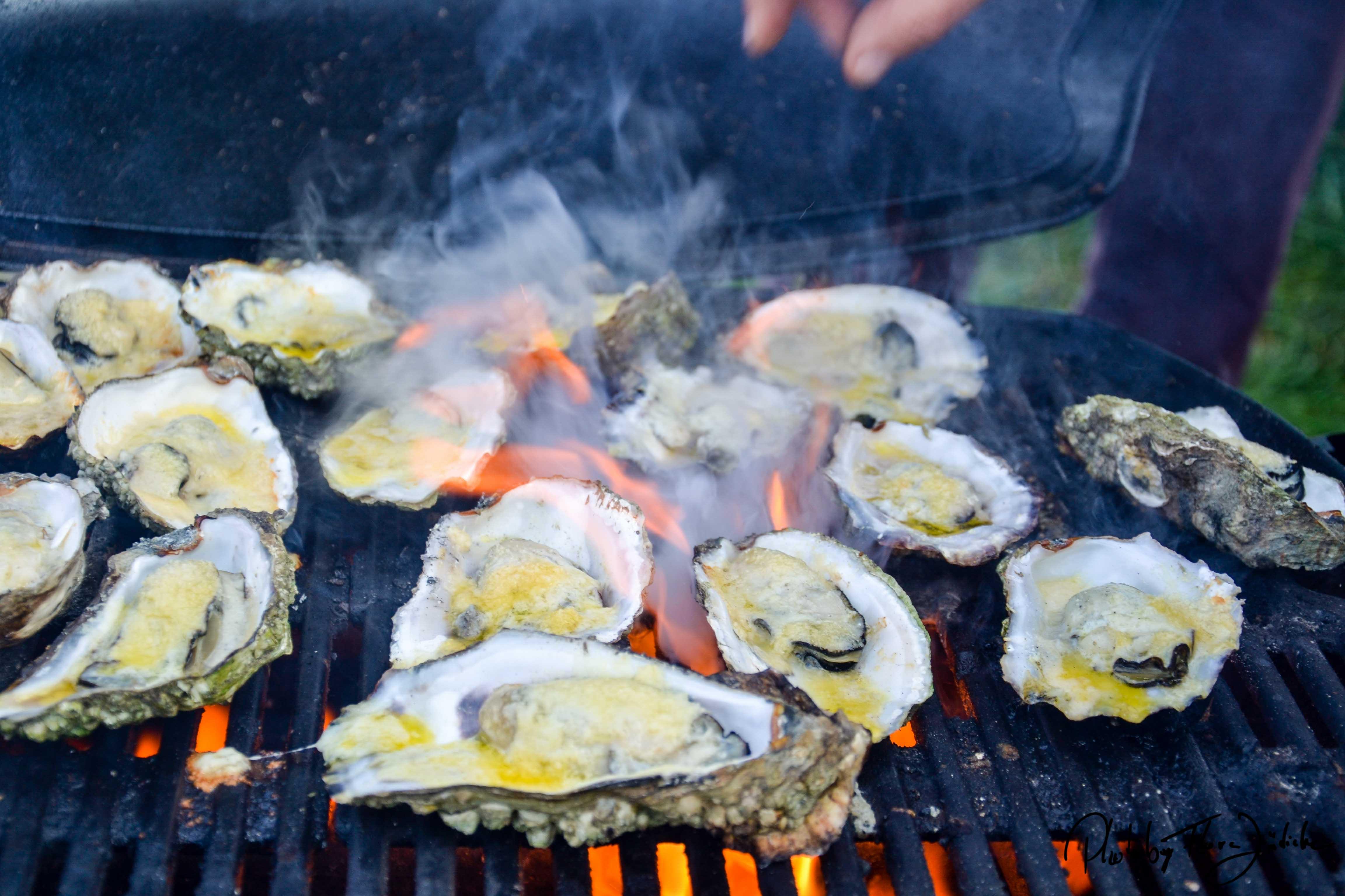 Einfach köstlich! Austern vom Grill mit Kräuterbutter und Parmesankäse.