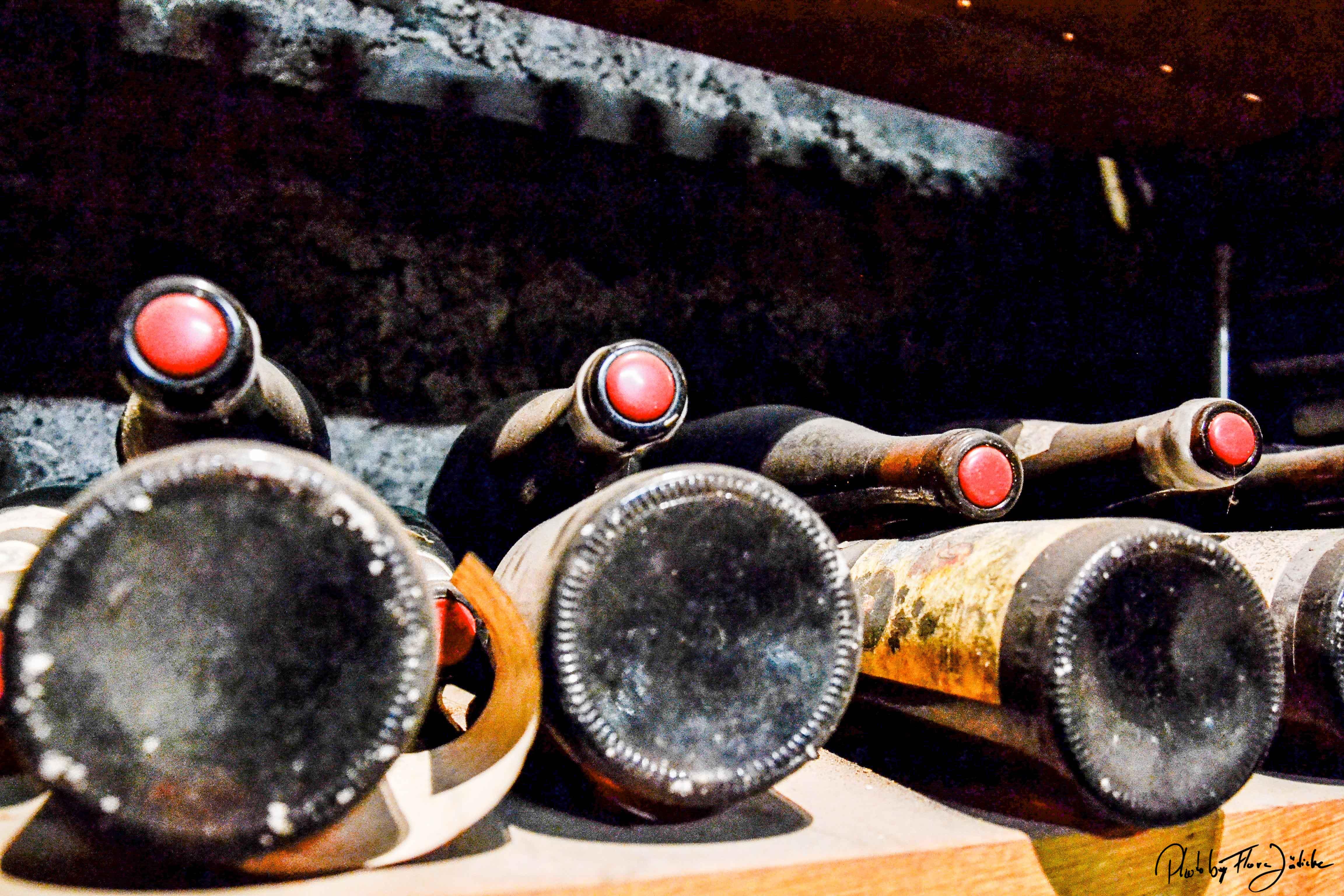 Der Weinbau in Hagnau hat eine lange Tradition. Foto: Flora Jädicke