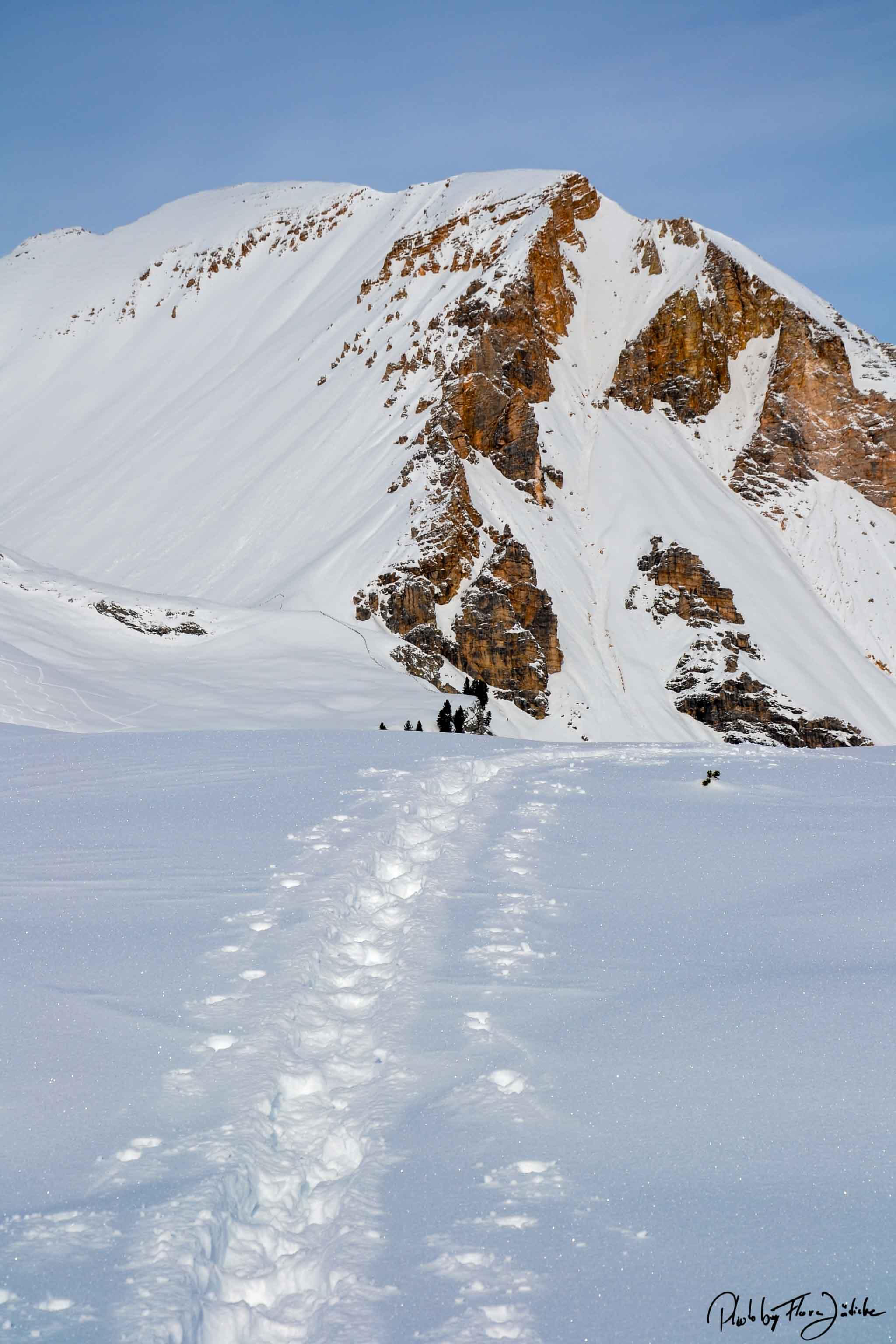 Den Monti Pallidi auf der Spur. Foto: Flora Jädicke