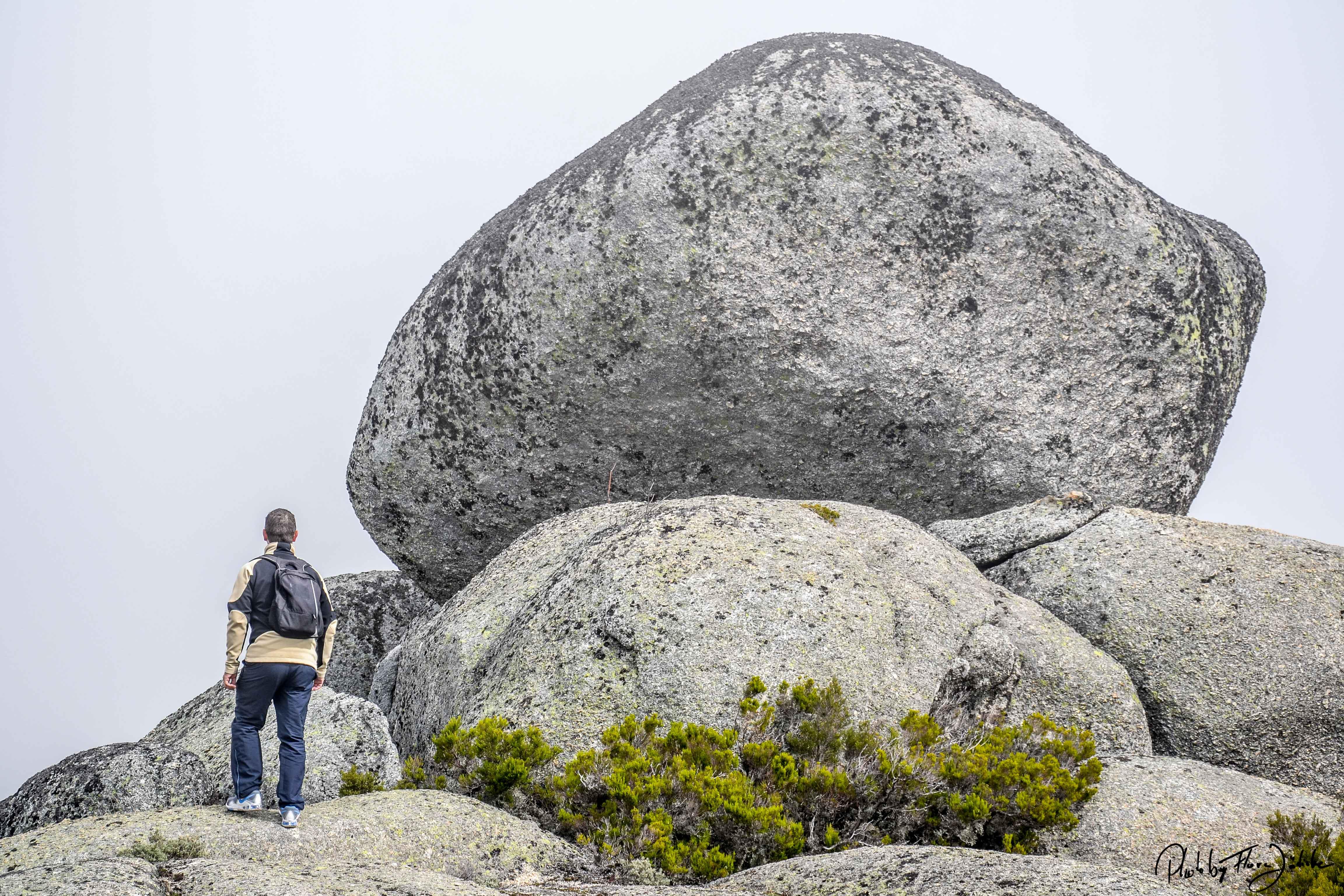 Findlinge, die Gletscher zurückließen. Foto: Flora Jädicke