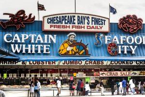 Traditionsreicher Fischmarkt an der neu gestalteten Southwest Waterfront in Washington DC. Foto: Flora Jädicke